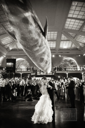 wedding venues NYC: museum of natural history